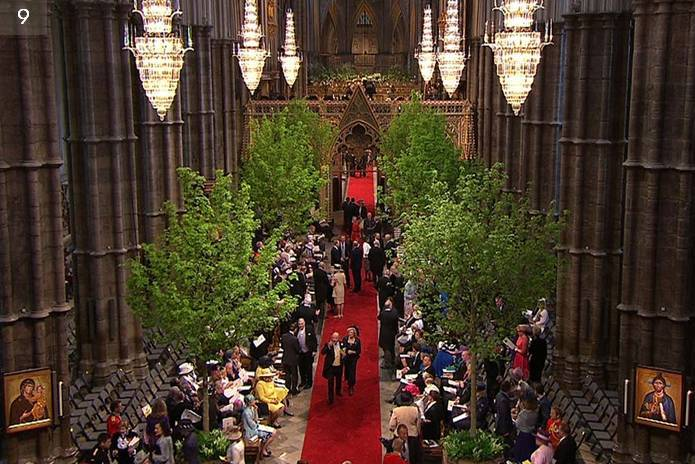Westminster Abbey Trees, Royal Wedding Trees