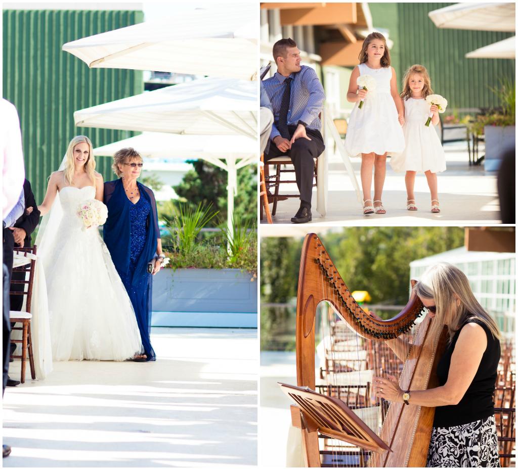 Edmonton Harpist