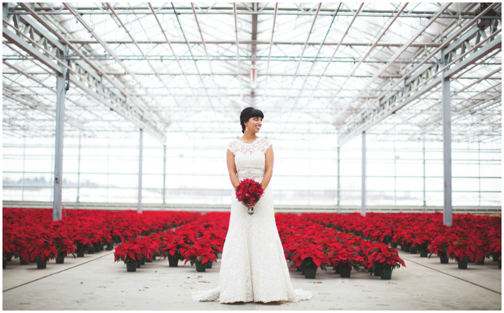 Red Poinsettias Bridal Photo