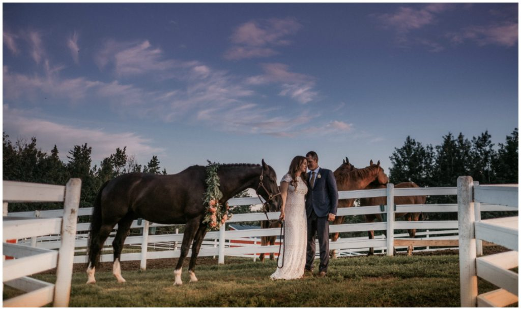 Rural Alberta Wedding Planner, Canadian Horse Farm Wedding