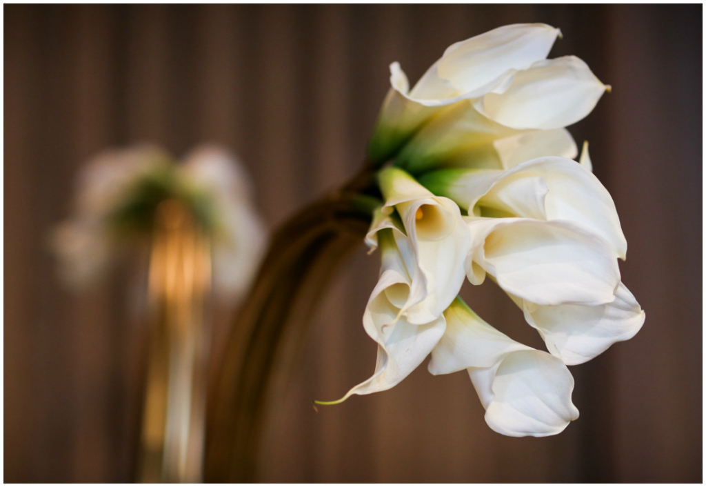 Modern White Calla Lily Florals with Gold stems