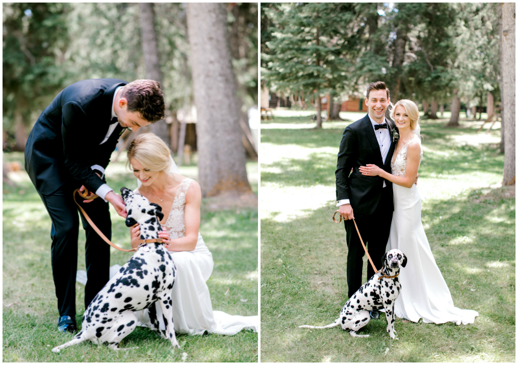 Bride and Groom Dalmatian Photo
